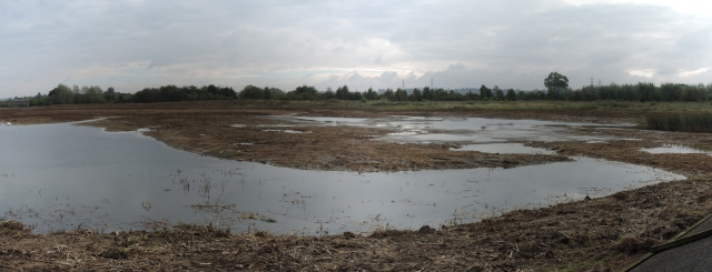 Summer Leys scrape: view from hide after reprofiling (Steve Brayshaw)