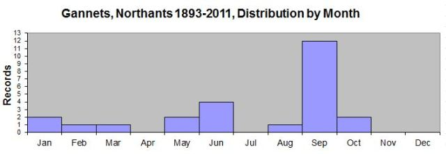 Gannets, Northants, by month