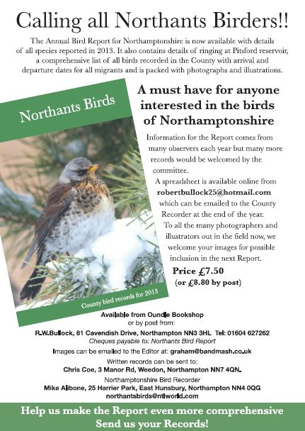 NBR 2013 Flyer